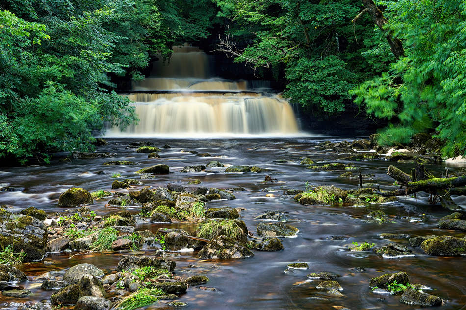 Cotter Force