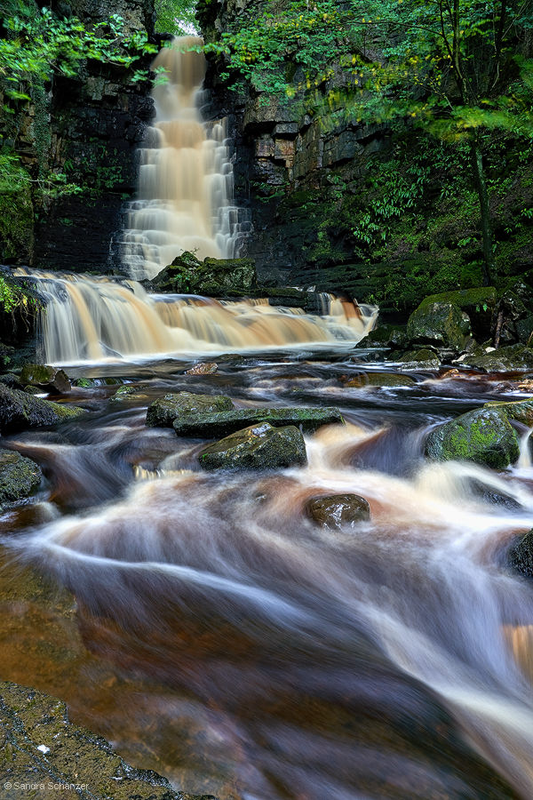 Mill Gill Force