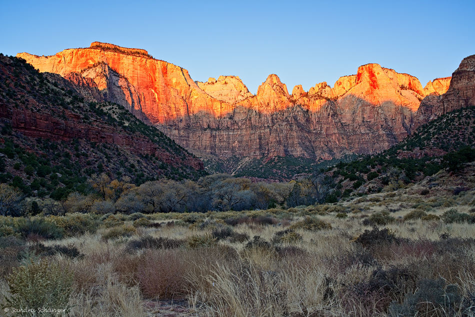 Towers of the Virgin – Zion Nationalpark