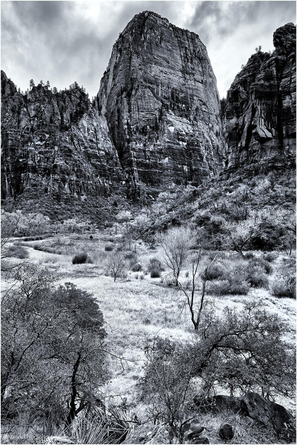The Great White Throne Zion