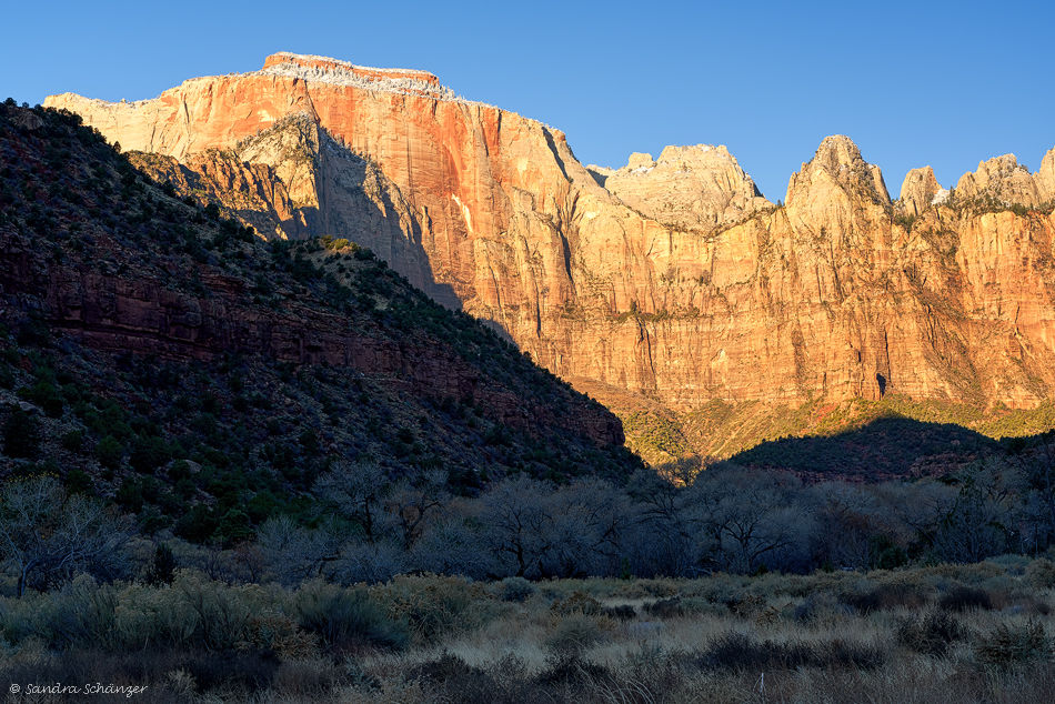 Towers of the Virgin Zion Nationalpark